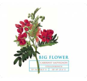 Big Flower - Cabernet Sauvignon label