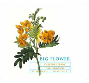 Big Flower - Cabernet Franc label