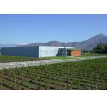 Baron Philippe de Rothschild Chile Partners with Monsieur Touton Selection Ltd.